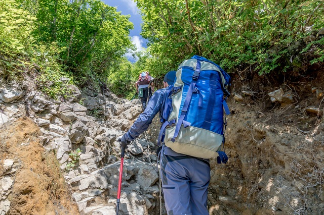 trekkingpole-1